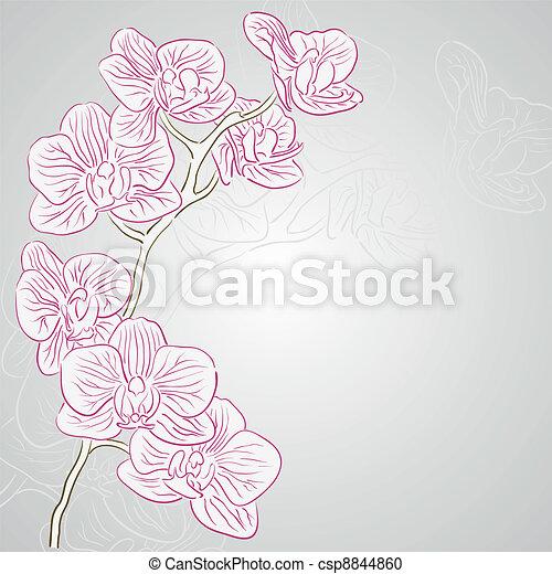 Orquídea. - csp8844860