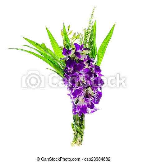 Orquídea rosa - csp23384882