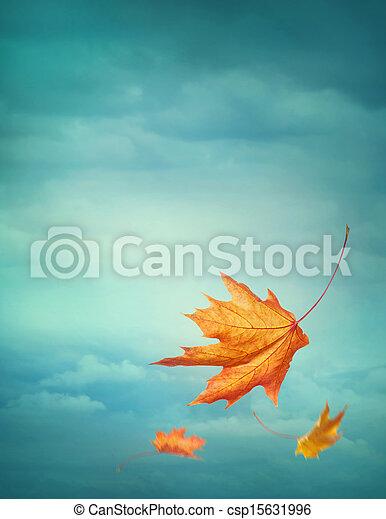 Caen hojas de otoño - csp15631996