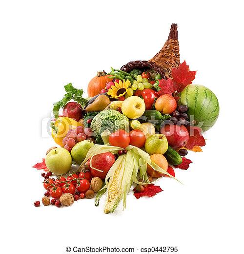 Autumn cornucopia - csp0442795
