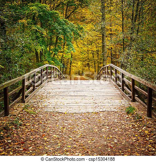 Puente en el bosque de otoño - csp15304188