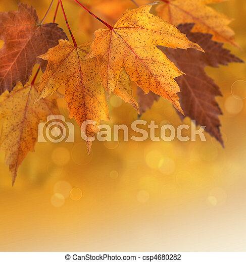 El otoño sale con un fondo de enfoque poco profundo - csp4680282