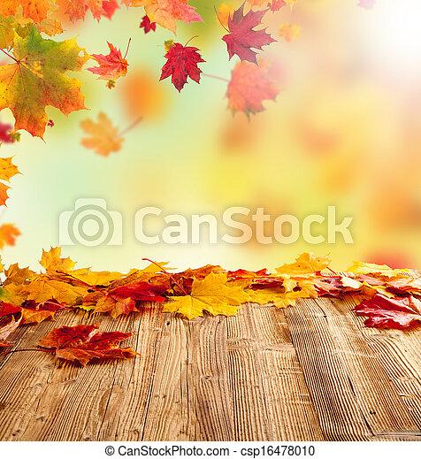 Hojas de otoño - csp16478010