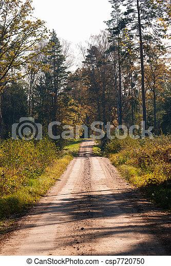 El camino del bosque en un soleado día de otoño - csp7720750