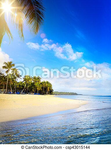 Playa tropical de verano, fondo de vacaciones en paz - csp43015144