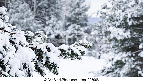 Un paisaje de invierno - csp1298006