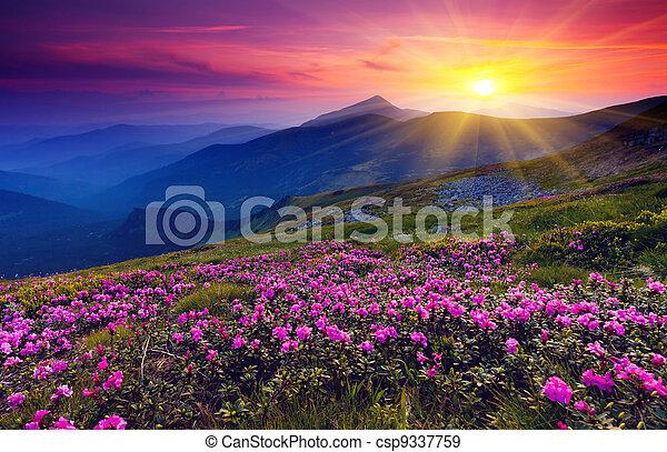 Un paisaje de montaña - csp9337759