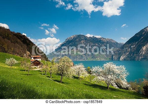 Escenarios de primavera en el lago Lucern - csp1857849