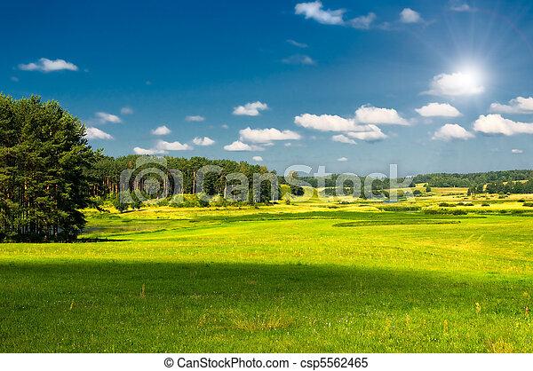 Un paisaje rural - csp5562465