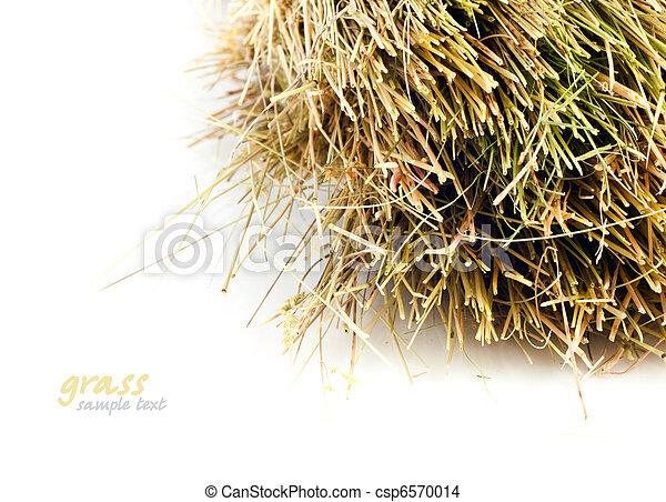 Straw - csp6570014