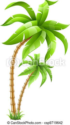 Palmeras tropicales - csp9719642
