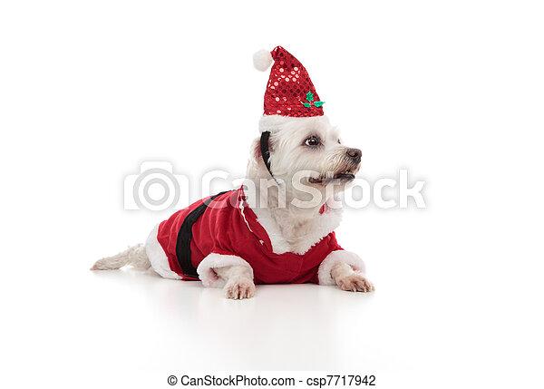 Papá Noel de Navidad mirando de lado - csp7717942