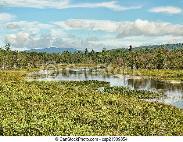 El parque estatal adirondack - csp21309854