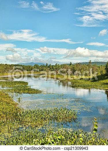 El parque estatal adirondack - csp21309943