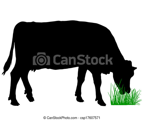 Vaca grasosa - csp17607571