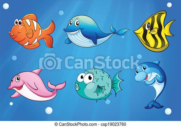 Peces coloridos y sonrientes bajo el mar - csp19023760
