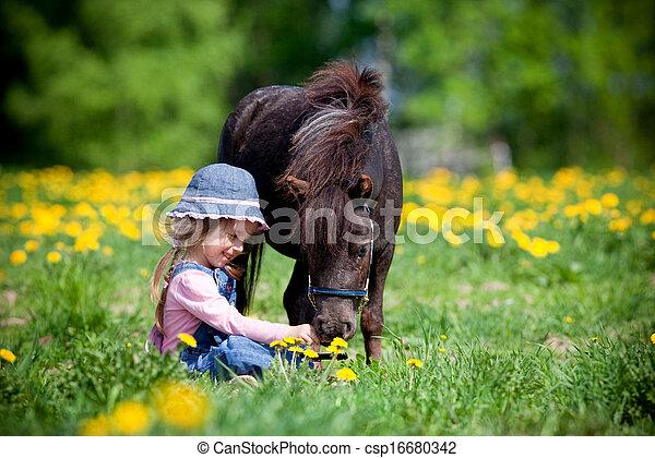 Niño y caballo pequeño en el campo - csp16680342