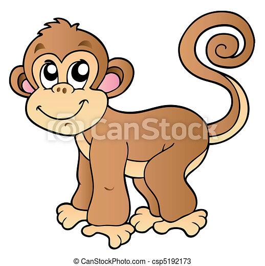 Lindo mono pequeño - csp5192173