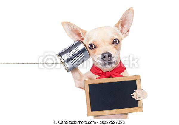 Perro al teléfono - csp22527028
