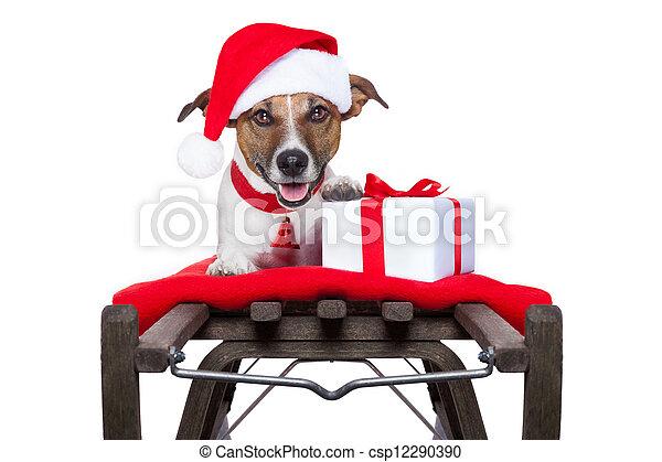 Perro de Navidad en trineo - csp12290390