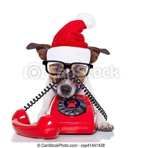Perro en el teléfono de Navidad sombrero de Santa - csp41441438