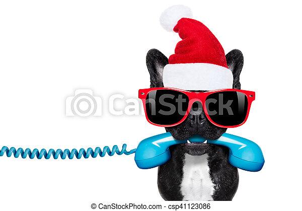 Perro en el teléfono de Navidad sombrero de Santa - csp41123086