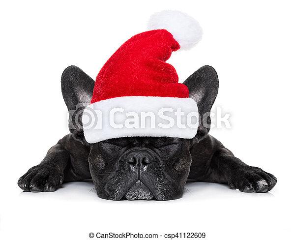 Perro navideño de Santa - csp41122609