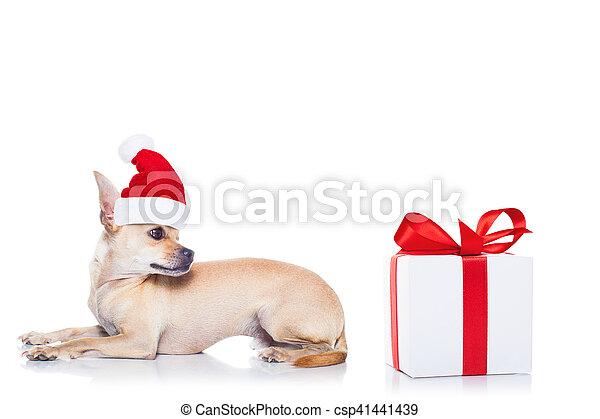 Perro navideño de Santa - csp41441439