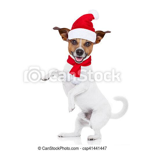 Perro navideño de Santa - csp41441447