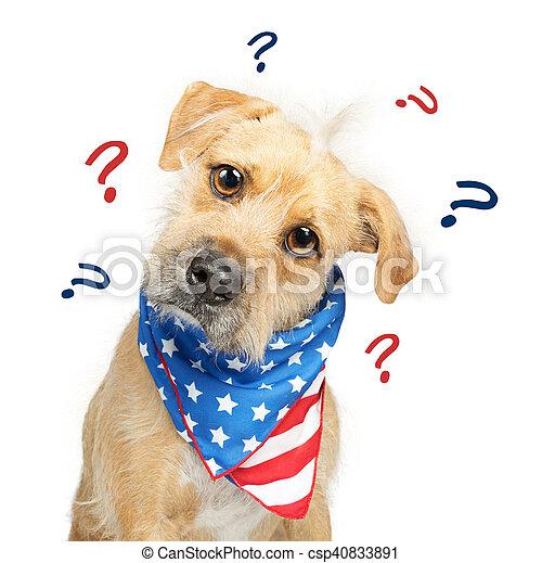 Perro americano confundido - csp40833891