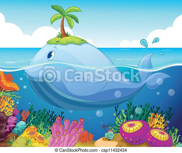 Pesca, isla y coral en el mar - csp11432434