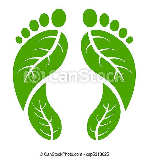 Pies verdes - csp5313625