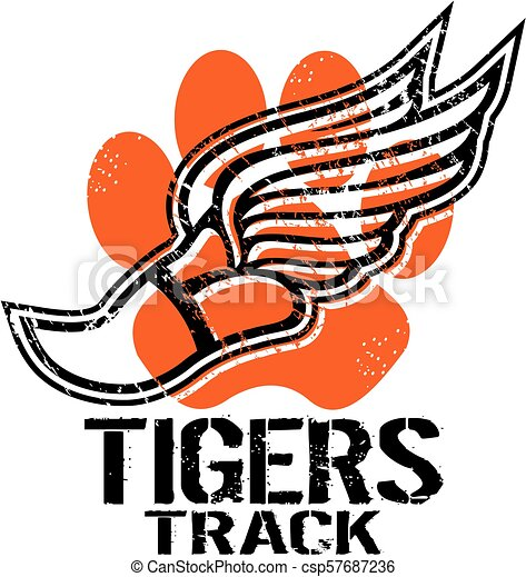 Los tigres rastrean - csp57687236