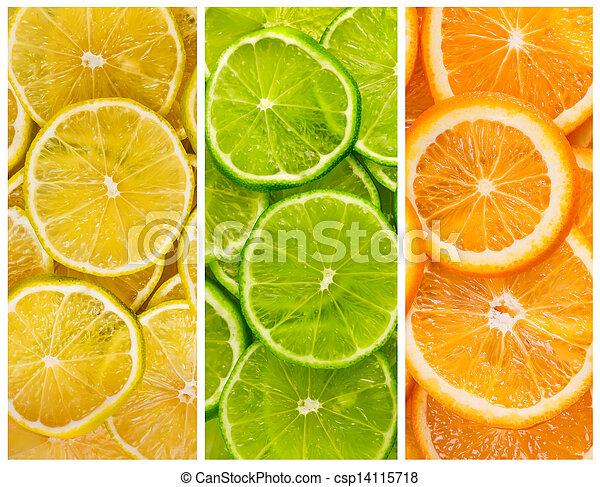 En el fondo con citricos - csp14115718