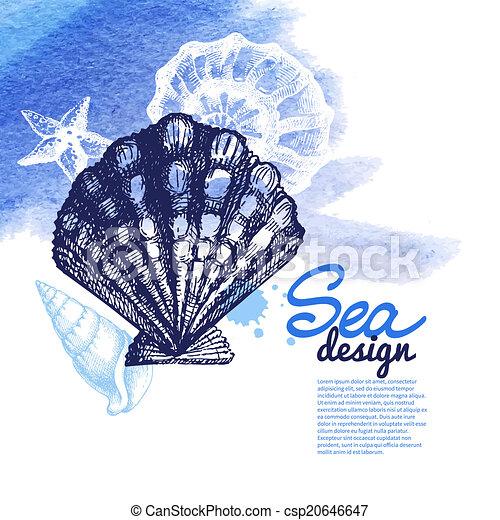 Conchas marinas - csp20646647