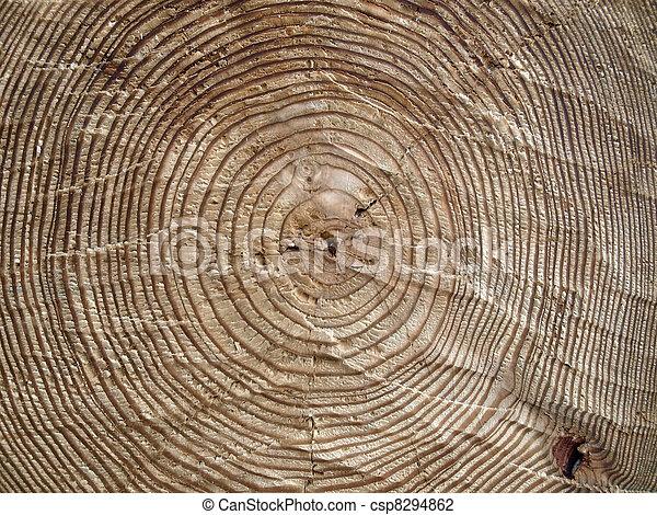 Un fondo de madera - csp8294862