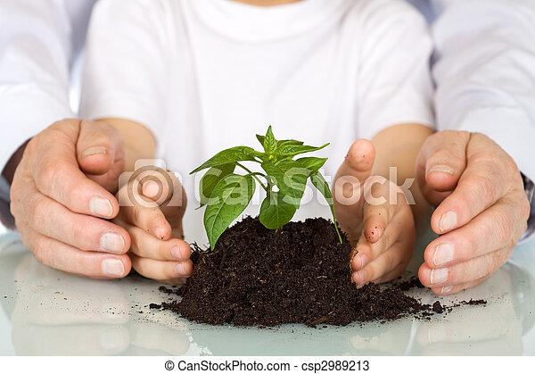 Plantar una semilla hoy - concepto ambiental - csp2989213
