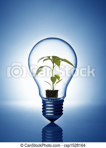 Planta dentro de la bombilla - csp1528164