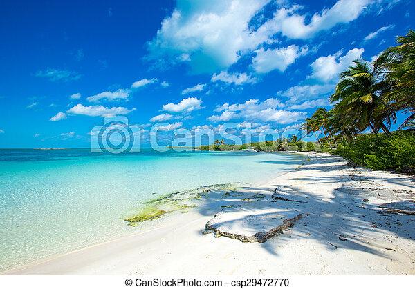 Playa - csp29472770