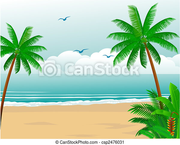 Playa tropical - csp2476031