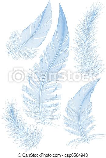 Plumas de vector azul - csp6564943