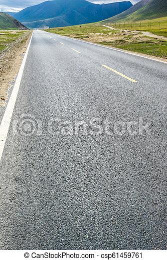 Camino en la pradera - csp61459761