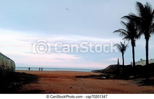 Praia, areia, coqueiros, ceu - csp70201347