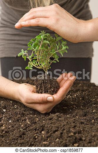 Proteger el medio ambiente - csp1859877