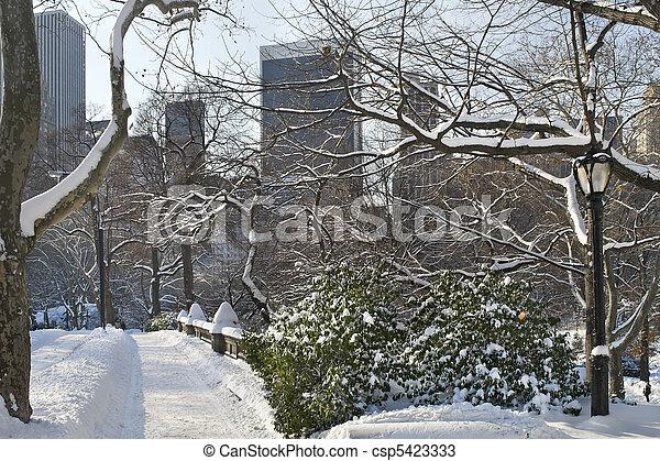 Puente de Nieve Central Park - csp5423333