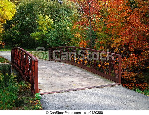 Puente de otoño - csp0120380