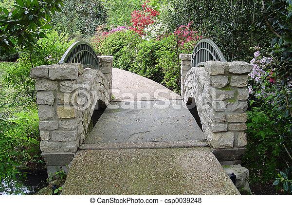 Puente - csp0039248