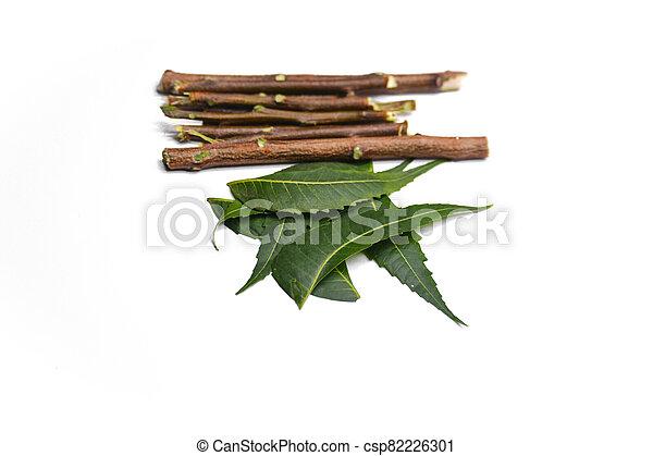 ramitas, plano de fondo, hojas, neem, blanco, aislado, medicinal - csp82226301
