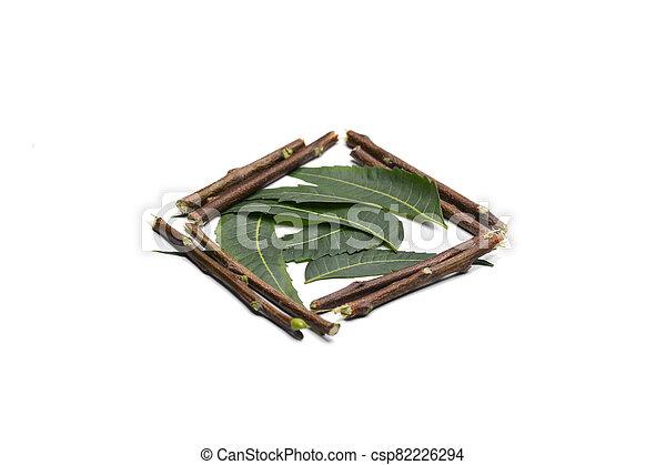 ramitas, plano de fondo, hojas, neem, blanco, aislado, medicinal - csp82226294