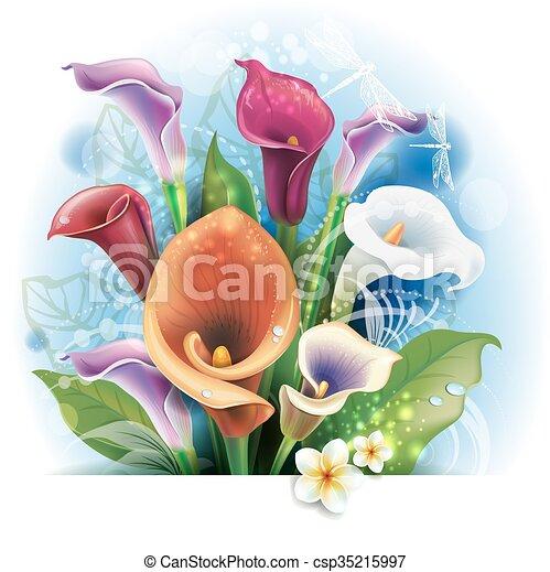 Bouquet de calas - csp35215997